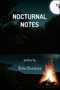 Review: Nocturnal Notes by Bola Olusanya